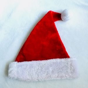 Accessories - NWT Santa Hat